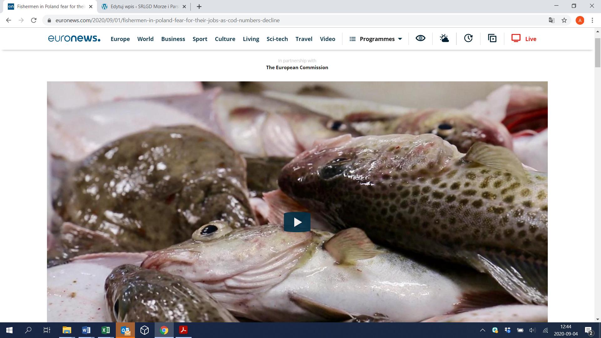 reportaż Euronews o sytuacji kołobrzeskich rybaków po wprowadzerniu zakazu połowów dorsza